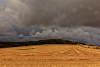 Storm Brewing, The Trundle